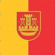 Klaipėdos veliava 140x140